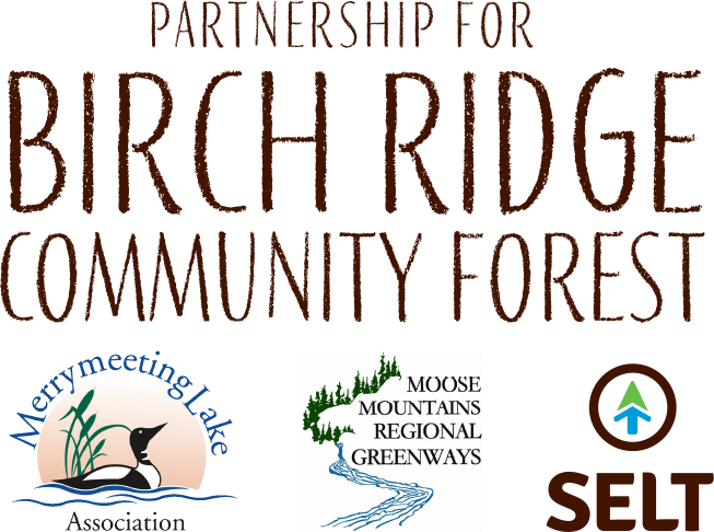 We've Reached Our Goal to Save Birch Ridge!!!